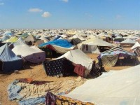 68_campamentosshara149224ae.jpg